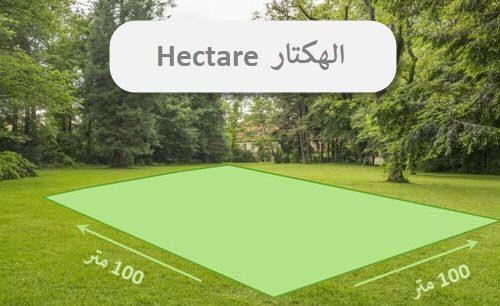 ما هو الهكتار ؟ والهكتار كم متر و كم كيلو ؟